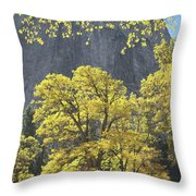 1m6610 Middle Cathedral Rock In Autumn Throw Pillow
