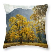 1m6611-oak Trees And Middle Cathedral Rock In Autumn Throw Pillow