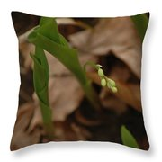 1st Lily Of Spring Throw Pillow