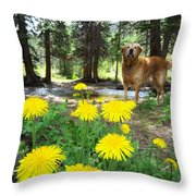 1st Trip Of The Summer Throw Pillow