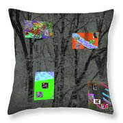 2-18-2057a Throw Pillow