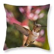 Allen's Hummingbird Throw Pillow by Mike Herdering