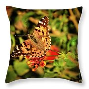 American Painted Lady Throw Pillow