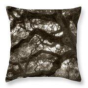 Angel Oak Live Oak Tree Throw Pillow
