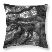 Angel Oak Tree Charleston Sc Throw Pillow