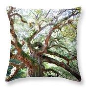 Angel Oak Tree Throw Pillow