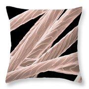 Angora Rabbit Hairs, Sem Throw Pillow