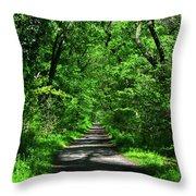 Appalachian Trail In Maryland Throw Pillow