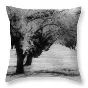 Apple Orchards In Dixon Throw Pillow