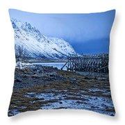 Arctic Reflections Throw Pillow