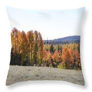 Colorful Aspen Trees Throw Pillow