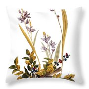 Audubon: Sparrow, 1827-38 Throw Pillow
