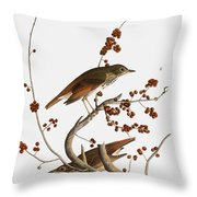 Audubon: Thrush Throw Pillow