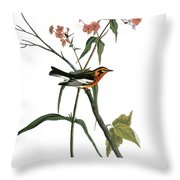 Audubon: Warbler, (1827-38) Throw Pillow