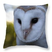 Australian Barn Owl Throw Pillow