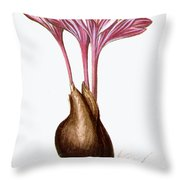 Autumn Crocus Throw Pillow