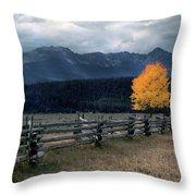 Autumn Light Throw Pillow