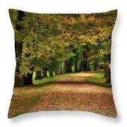 Autumn Park Throw Pillow