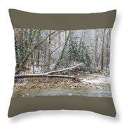 Autumn Snow Williams River  Throw Pillow
