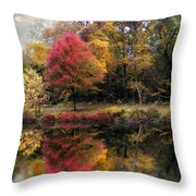Autumn's Mirror Throw Pillow