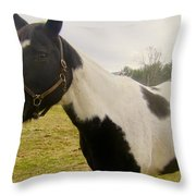 Babe Throw Pillow