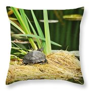 Babs Throw Pillow