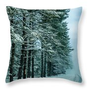 Bad Road Conditions While Driving In Winter Throw Pillow