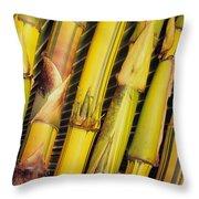 Bamboo Stalks Throw Pillow