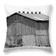 Barn In Kentucky No 71 Throw Pillow