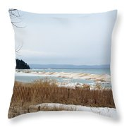 Beach And Ice Throw Pillow