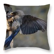Beak To Beak Throw Pillow