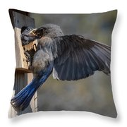 Beak To Beak Throw Pillow