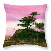 Beautiful Shore Throw Pillow
