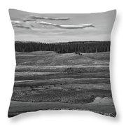 Beautiful Yellowstone Throw Pillow