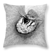Beehave Throw Pillow