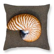 Bellybutton Nautilus - Nautilus Macromphalus Throw Pillow