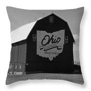 Bicentennial Barn Throw Pillow