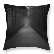 Bikeway Throw Pillow