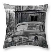 2 Throw Pillow by Bitter Buffalo Photography