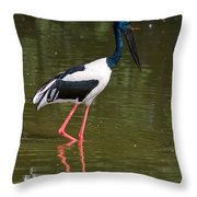 Black-necked Stork Throw Pillow