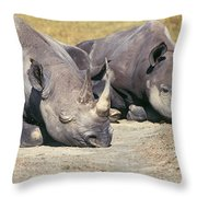 Black Rhinocerous Throw Pillow
