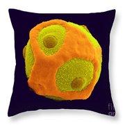 Blackcurrant Pollen, Sem Throw Pillow