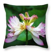 Blossoming Lotus Flower Closeup Throw Pillow