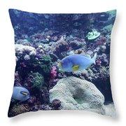 Blue Fish Throw Pillow