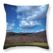 Blue Ridge Foothills Throw Pillow