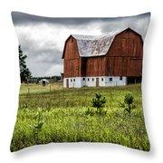 Brutus Barn Throw Pillow