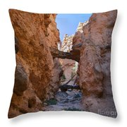 Navajo Trail Natural Bridge Throw Pillow