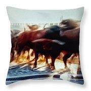 Bull Run Throw Pillow