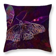 Butterfly Insect Wing Wildlife Bug  Throw Pillow