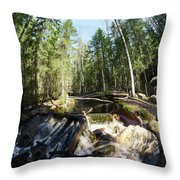 By The Mill Throw Pillow